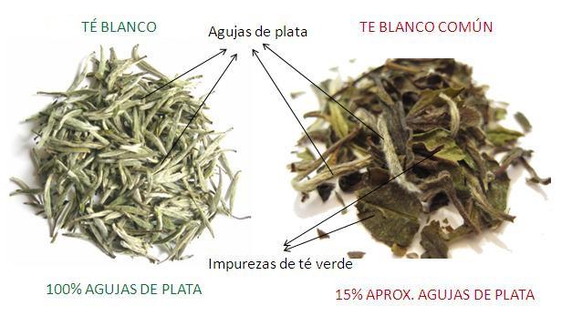 té blanco té verde
