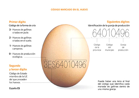 curiosidades sobre los huevos, etiquetado de los huevos