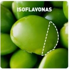 Isoflavonas de la soja