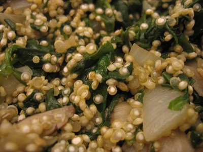 propiedades nutricionales de la quinoa. nutrientes quinoa