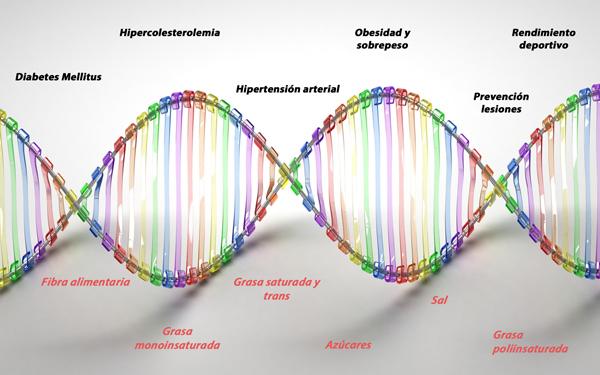 test nutrigenético, nutrigenómica, dieta personalizada