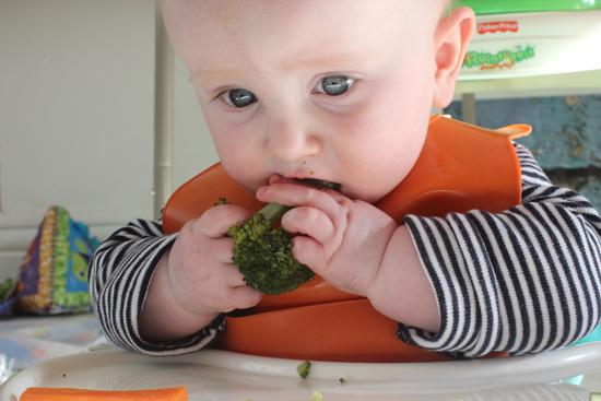 consumo de fruta y verdura en los niños, baby led weaning