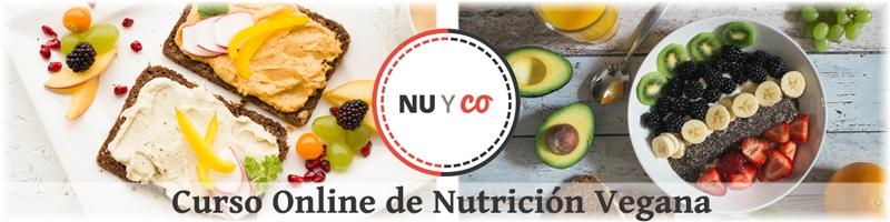 curso online de nutrición vegana